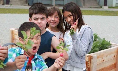 Teaching Kids to Grow Food